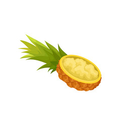 One half of cut lengthwise pineapple with flesh vector