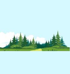 Path to wild dark forest vector