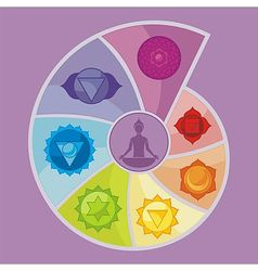 The Seven Chakras vector image