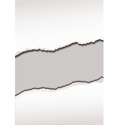 white paper tear vector image