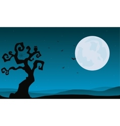 Halloween dry tree and full moon backgrounds vector image vector image