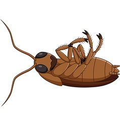 Cartoon dead cockroach vector image