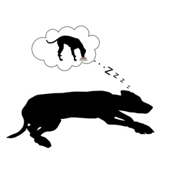 Dog dreams of feeding vector image