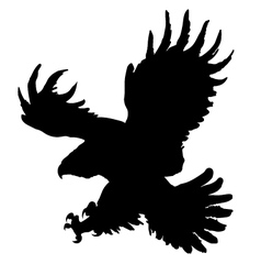 Golden eagle vector
