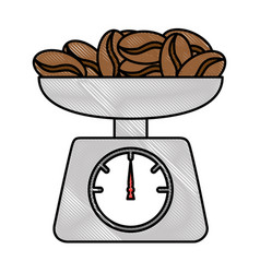 gramer with coffee seeds isolated icon vector image