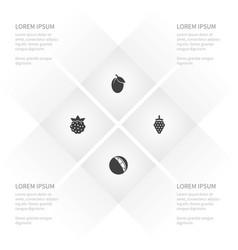 icon healthy set of raspberry apple tree vector image