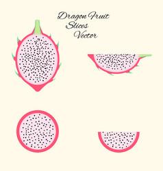 pitahaya exotic fruit set in flat style isolated vector image