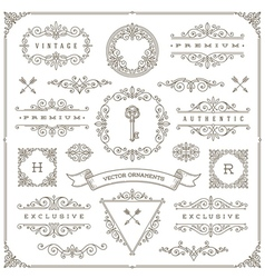 Set of vintage ornaments design elements vector