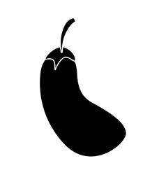 Silhouette eggplant natural vegetable vector