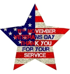 veterans day flag vector image