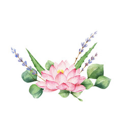 Watercolor composition lotus flower and vector