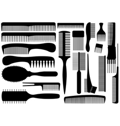 Set Of Different Combs vector image