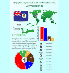 cayman islands infographics for presentation all vector image