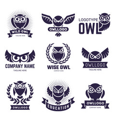 Owl badges flying birds with feathers wild vector