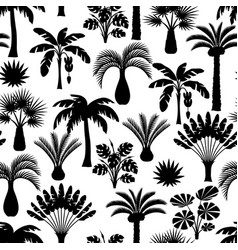 seamless pattern with tropical palm trees exotic vector image