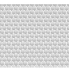 White Pattern Hexagon Mosaic vector image