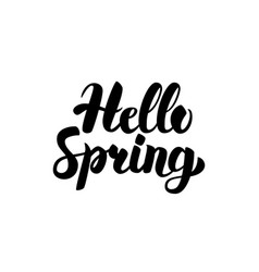 hello spring handwritten calligraphy vector image vector image