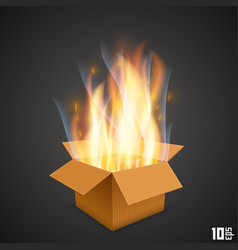 box of fire vector image vector image