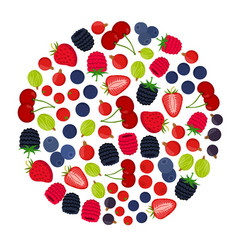 cartoon berries menu flat vegetarian food vector image