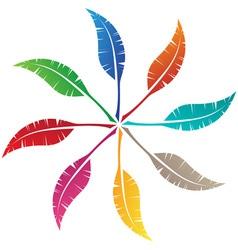 elegant feather emblem design vector image vector image