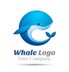 Whale Volume Logo Colorful 3d Design Corporate vector image vector image