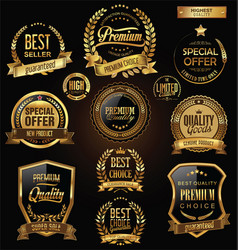luxury badges and labels with laurel wreath vector image vector image