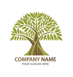 abstract branch and tree logo for company business vector image