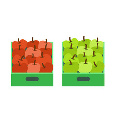 Apple shop plastic containers with fruits market vector