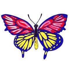 drawn butterflies watercolor vector image