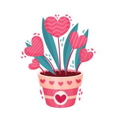 Fancy heart shaped flowers in flowerpot as saint vector