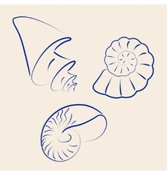Hand drawn collection of various seashells vector