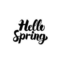 hello spring handwritten lettering vector image