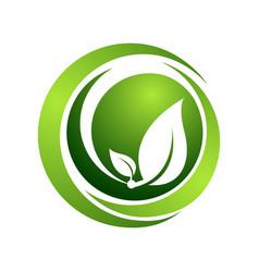 organic logo template concept circle green vector image