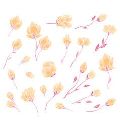 pink sakura blossom vector image