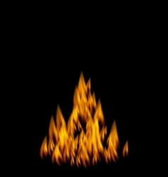 Realistic Fire Flame on Black Background vector