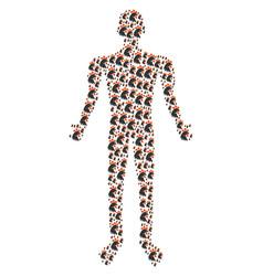 rooster head human figure vector image