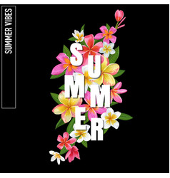 summertime floral poster plumeria flowers vector image