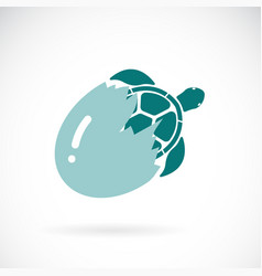 turtle coming out of the egg on a white vector image