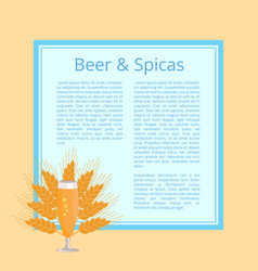 beer and spices poster with pilsner glass vector image