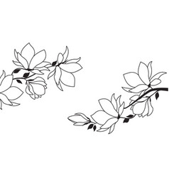 floral decoration with flowers vector image
