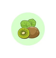 Icon Colorful Kiwifruit vector image