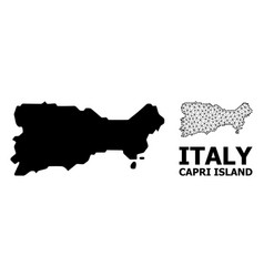 Solid and carcass map capri island vector