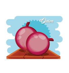 fresh onion healthy food vector image