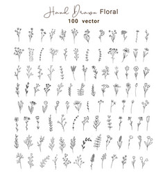 Set vintage floral and leave hand drawn vector