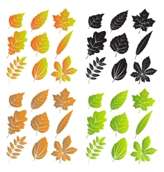 Silhouettes of Leaves With Veins vector