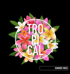 Tropical floral summer design plumeria flowers vector