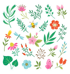 floral design elements and insects vector image vector image