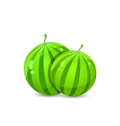 Two Juicy Whole Watermelons vector image