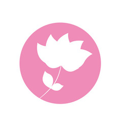 flower nature flourishes icon vector image vector image