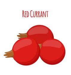 fresh berries red currant flat vegetarian food vector image vector image
